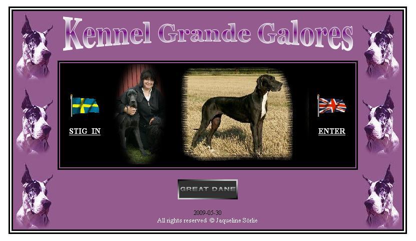 Kennel Grande Galores - http://www.greatdanes.se